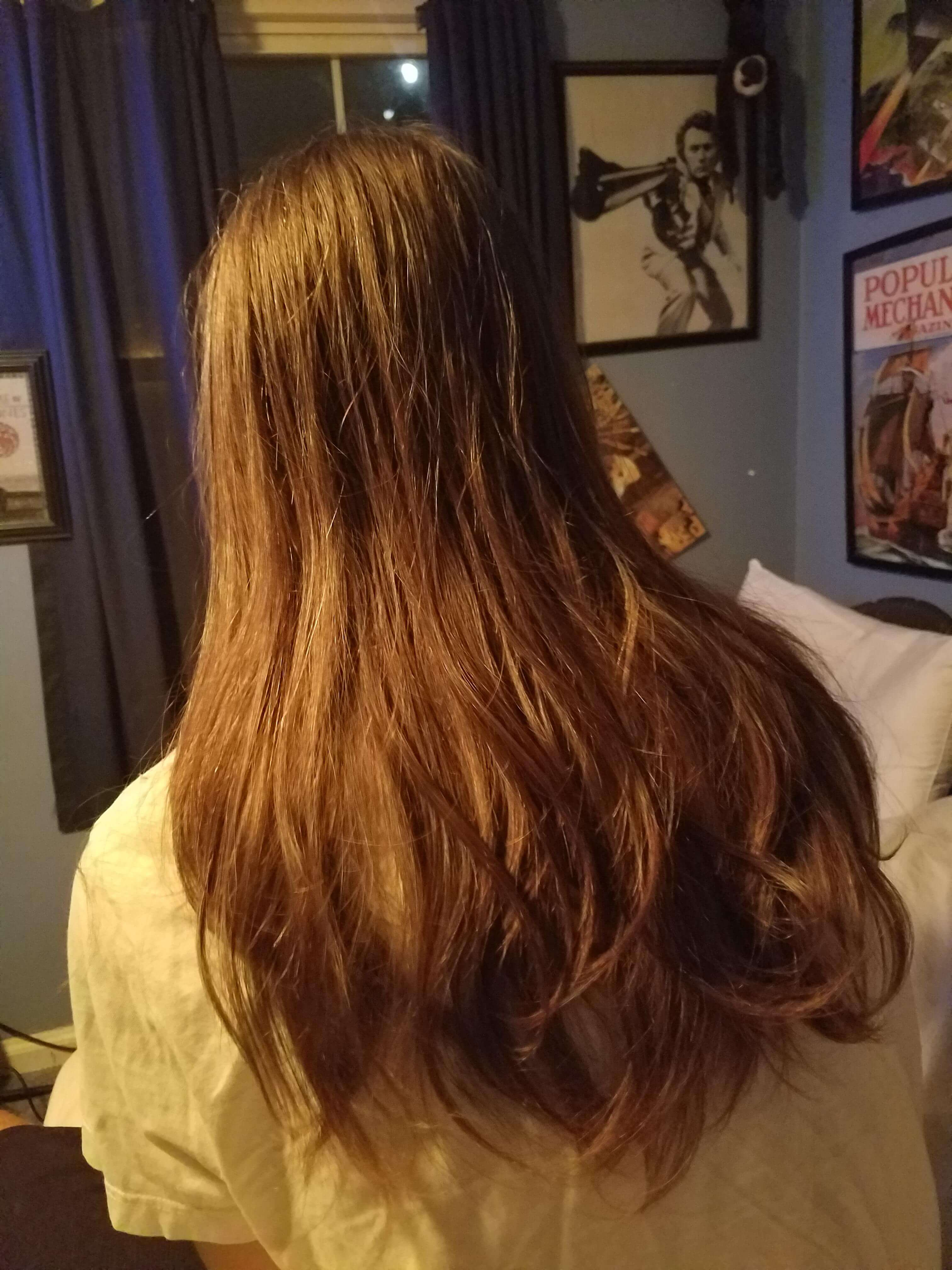 Blog Post 100 Its You Its Us Its The Longhairs The Longhairs